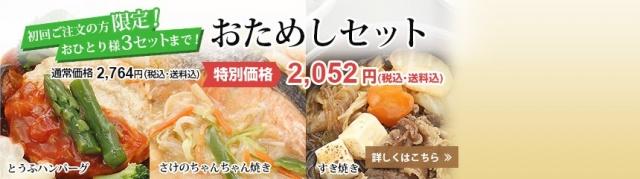 おまかせ健康三彩 豆腐ハンバーグ3