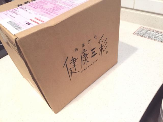 おまかせ健康三彩 豆腐ハンバーグ6