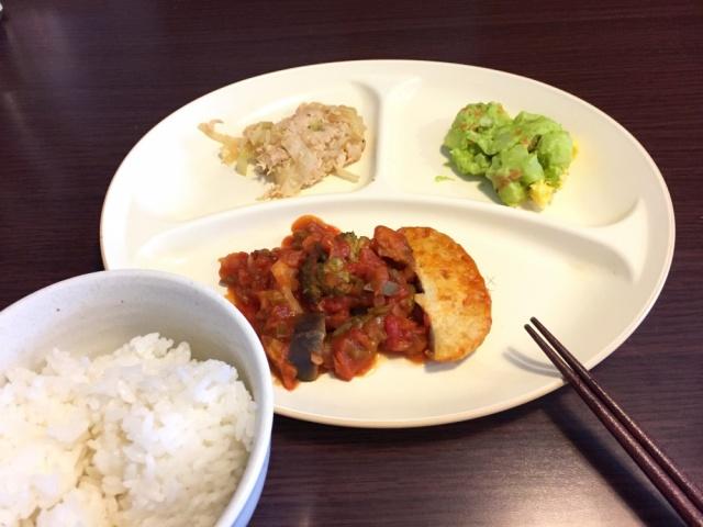 おまかせ健康三彩 豆腐ハンバーグ14