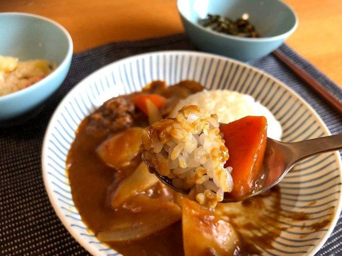 わんまいる 北海道産じゃが芋と玉ねぎのビーフカレー13