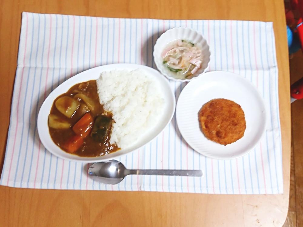 わんまいる 夏野菜カレー7