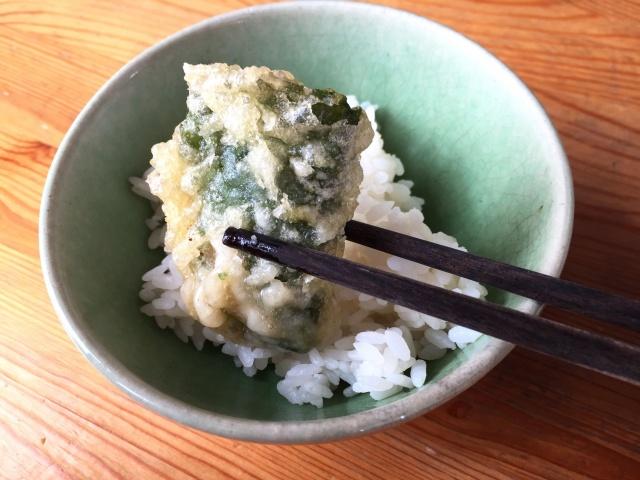 食宅便 魚介天ぷらと野菜のかき揚げ9